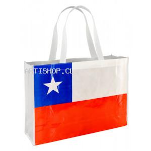 Bolsa TNT Bandera Chile  Congreso