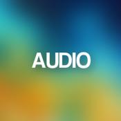 Audio (21)